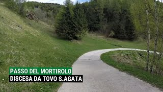 preview picture of video 'Mortirolo Pass MTB - Top to Bottom'