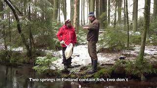 In the field with amphipods - Kentällä okakatkojen kanssa