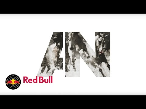 Run (2015) (Song) by AWOLNATION