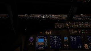 X-Plane 11 - LIVE - 737-800 ZIBO on VATSIM - KDAL to KHOU