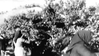 Inside Fascist Spain 1945 (full)