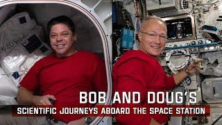 NASA Astronauts Robert Behnken and Douglas Hurley's Scientific Journeys aboard the Space Station