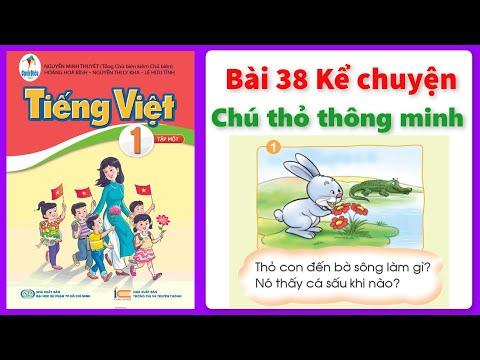 Kể chuyện CHÚ THỎ THÔNG MINH  Sách Cánh Diều | Tiếng việt lớp 1 | CHÂU CHI TV