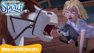 Saving Abigail | SPIRIT RIDING FREE