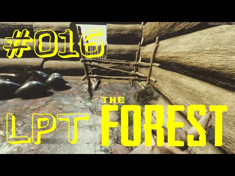 THE FOREST [HD] #016 - LPT - Planungen und Aussichten ★ Let's Play Together The Forest