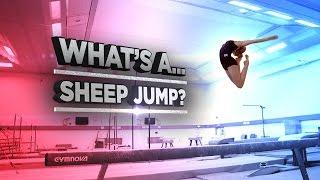 Gymnastics Explained - Sheep Jump