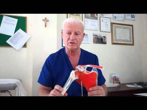 Dolore dellarticolazione dellanca durante zampe posteriori abduzione
