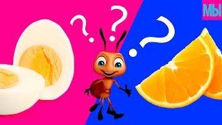ШКОЛА Челлендж Реакция МУРАВЬЕВ Апельсин против Яйца ЭКСПЕРИМЕНТ для детей О НЕТ Что не так Мистика