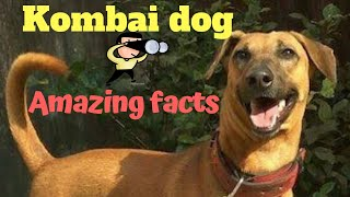 kombai dog price in tamilnadu - मुफ्त ऑनलाइन