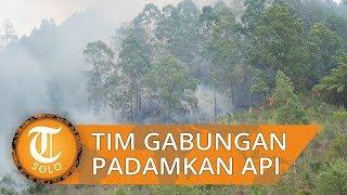 Untuk Padamkan Kobaran Api yang Melahap Sisi Timur Gunung Lawu, 438 Tim Gabungan Diturunkan