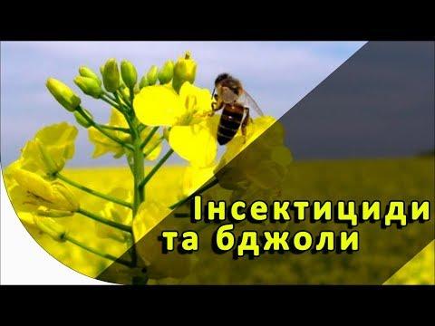 Безопасные для пчел инсектициды