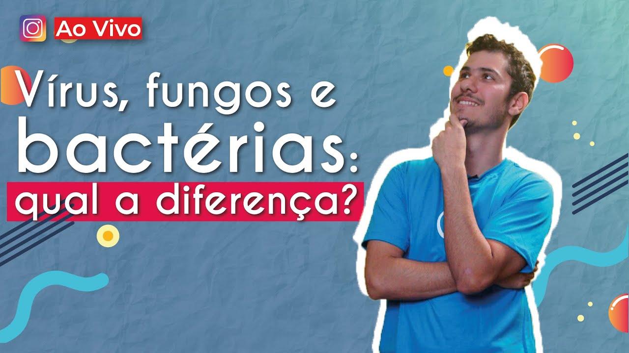 Vírus, fungos e bactérias qual a diferença?