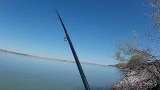 Рыбалка по южному казахстану