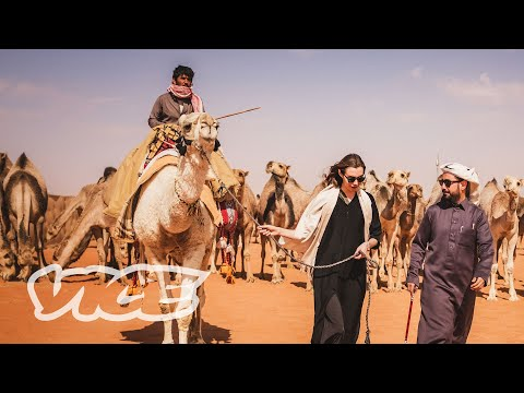 Respecting The Camels of Arabia