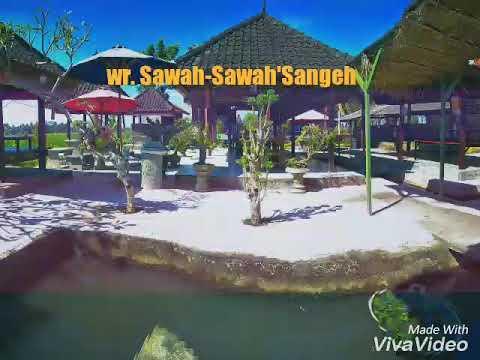 Ayo-mampir-ring-warung-sawah2-sangeh-semeton-Tempt-sejuk-dipinggir-sawah.html