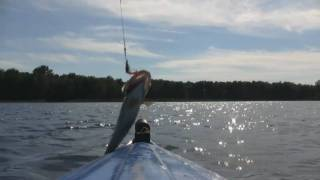 preview picture of video 'Fishing 'The Gut' - Grand Isle, VT'