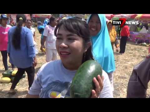 JOMBANG - Kemeriahan Pesta Tumpeng Semangka Dan Melon Di Panen Raya Hasil Petani