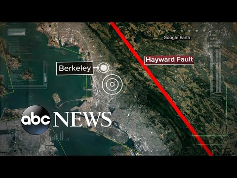 A magnitude 4.4 quake jolted the San Francisco Bay area.