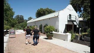 Tokara, an exceptional vineyard in the Stellenbosch Mountains