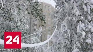 В Молдавии введено чрезвычайное положение из-за небывалых снегопадов