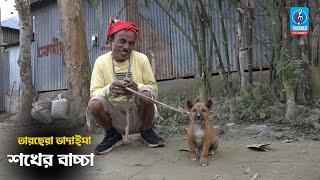 শখের বাচ্চা | Sokher Baccha | তারছেরা ভাদাইমা | Bangla New Comedy Koutuk 2021 | Badaima New Koutuk