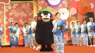 くまモン牛深ハイヤをキュートに踊る♫@東京ドーム(ふるさと祭り)2015/01/14