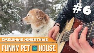 СМЕШНЫЕ ЖИВОТНЫЕ И ПИТОМЦЫ #6 СЕНТЯБРЬ 2018 [Funny Pet House] Смешные животные