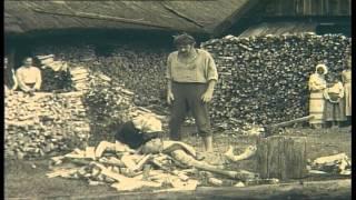 """Vaidybinis nuotykių filmas """"Tadas Blinda"""" (1972) Pirmoji serija 720x576 (16:9) High Quality"""