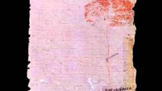 Satyagraha - Confessions