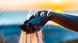 LiQWYD - Feel