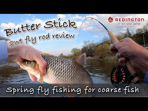 Fly fishing for coarse fish: big chub fishing challenge | Butter Stick 2wt fiberglass fly rod review