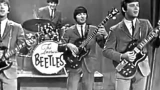 American Beetles School Days