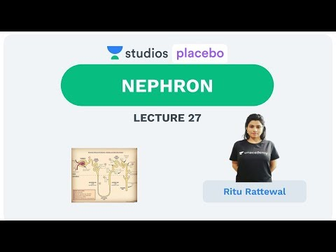 L28: Nephron  | Human Physiology (Pre-Medical-NEET/AIIMS) | Ritu Rattewal