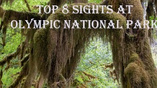Top 8 Sights at Olympic National Park