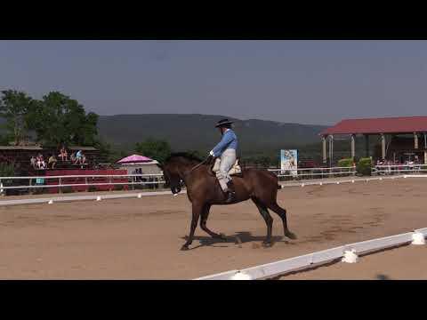 Final Cto Navarro Doma Acedo 200719 Video 1