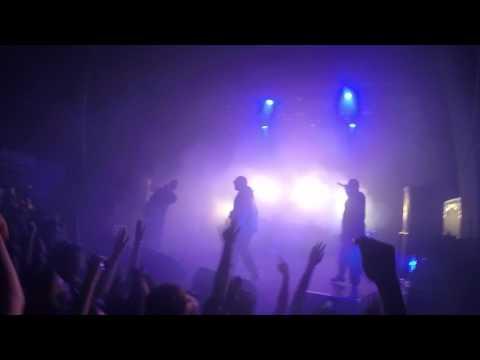 Грибы - Бери грибы (live)