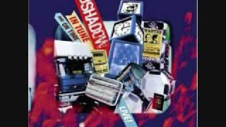 Lonely Soul - DJ Shadow