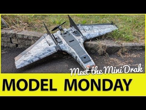 meet-the-ritewing-mini-drak--model-monday-1
