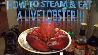 How To Steam & Eat A Live Lobster