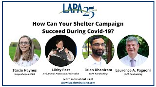 How to Think About Your Shelter Campaign During Covid