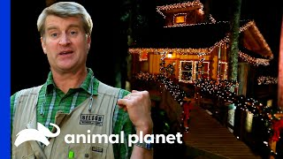 Building A Massive Cozy Christmas Treehouse For The Crew! | Treehouse Masters by Animal Planet