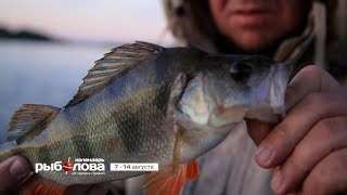 Календарь рыболова на сентябрь в саранске