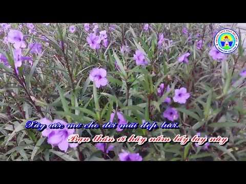Karaoke bài hát - Trường Em Trung học cơ sở Phan Bội Châu - Sáng tác: Võ Nguyên Trường