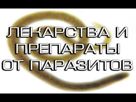 Папиллома причина паразиты