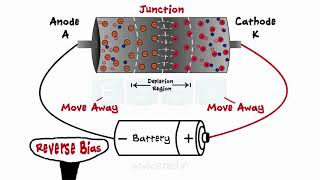 Diodes - What Are Diodes - PN Junction - Forward Bias - Reverse Bias - Zener Diodes