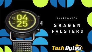 Fossil Skagen Falster 3 | Techbytes
