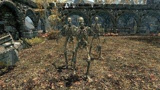 The Elder Scrolls V: Skyrim. Скелеты охраняют Рифтен. Прохождение от SAFa