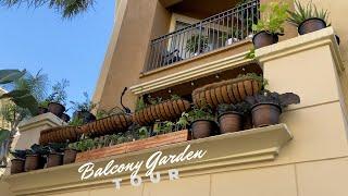 Edible Garden Tour | Apartment Balcony