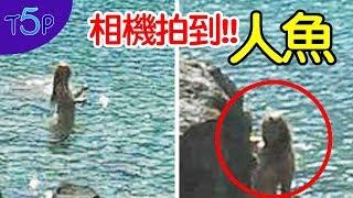 相機拍到!!5個「美人魚可能真的存在的」證據 | 五大排行