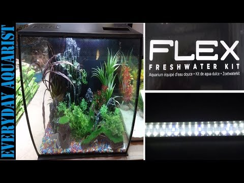 Fluval Flex Curved Aquarium 57L 34L QUICK REVIEW